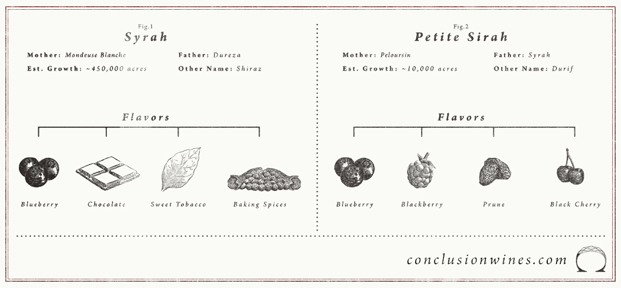 Here's a summary of the differences between Syrah and Petite Sirah.